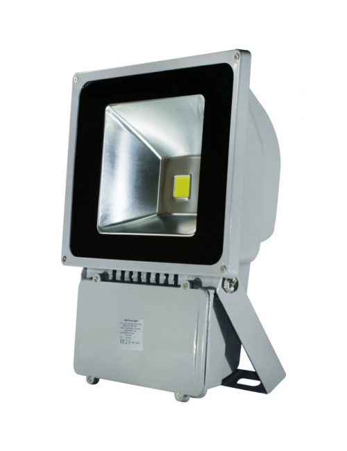 LED Industrial LED Flood Light Philippines 80W 80 Watts Daylight Lighting