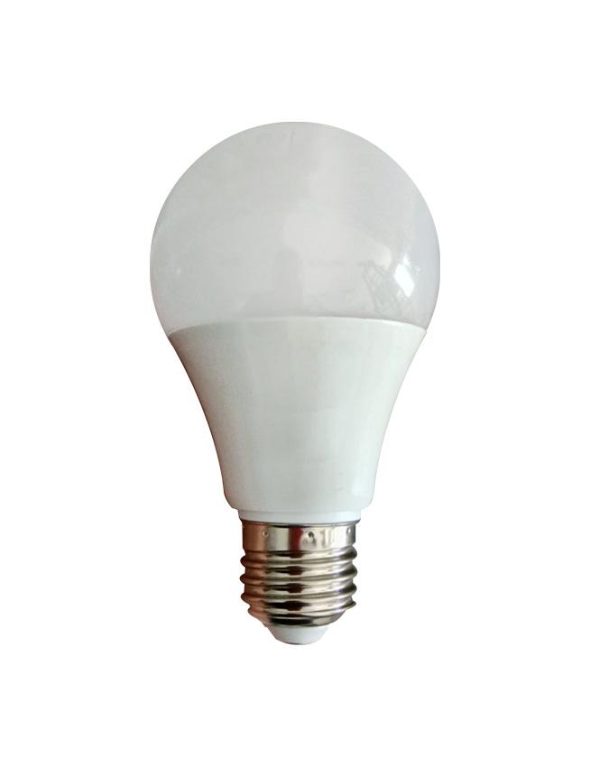 Day Time Light Bulbs: LED Bulb 12W Daylight