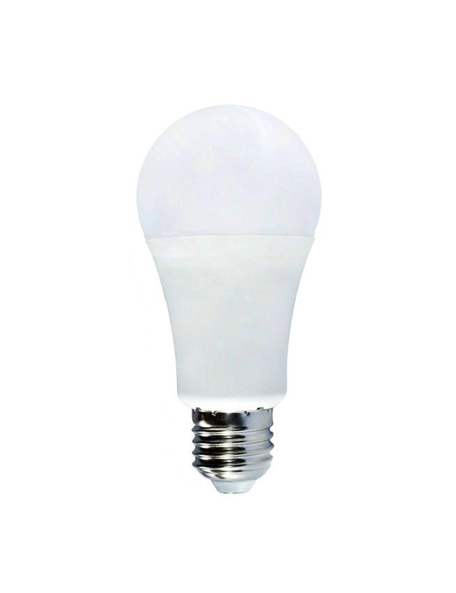 Day Time Light Bulbs: Ecoshift Corporation