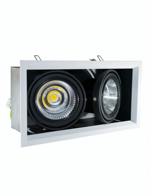 LED Multiple Downlight Philippines 20 Watts 2x20W SMD COB Daylight Warm Cool Nature White