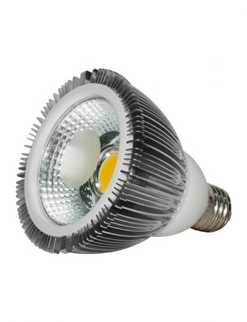 LED Spotlight Philippines COB Par38 E27 18W 18 Watts Warm Nature White Daylight 220V 12V