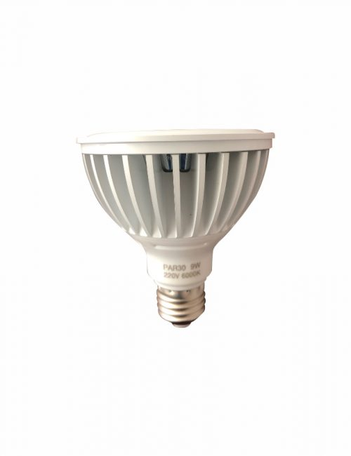 LED Parlight COB 9 Watts 9W PAR38 Warm White Ecoshift Corporation Philippines