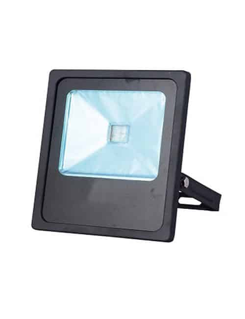 Economy LED Flood Light Philippines Lighting Daylight 30 Watts 30W