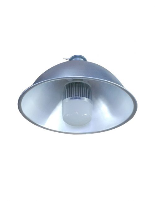 LED high bay 50w economy bulb type