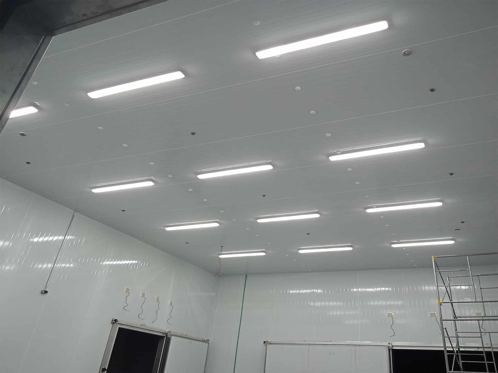 Ecoshift Project Top Food Manufacturing Company Best LED Lights Supplier Wholesale Prices and Discount LED Lighting Store