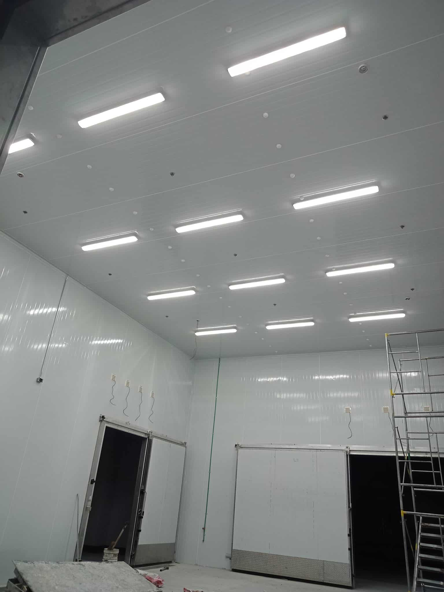 Top Food Manufacturing Company | LED Tri-proof Lights | Ecoshift Project