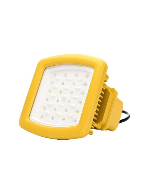 explosion-proof-led-flood-light-50w-2