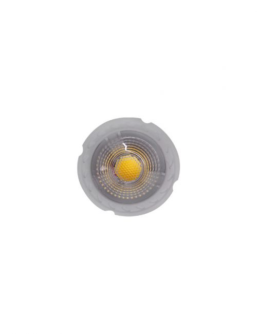 LED Spot Light 12V